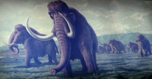 Diorama by the Sagamihara History Museum of mammoths roaming the land