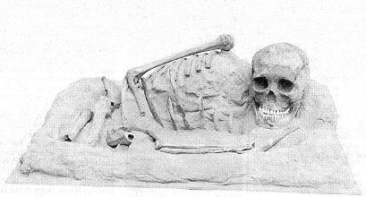 oldest-jomon-skeleton.jpg