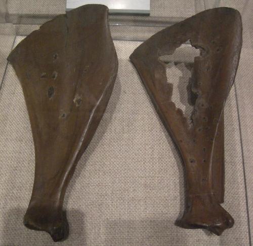 Bones used for fortune-telling, Otsu village, Yokohama