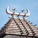 Reconstructed building with birds perched on roof at the Yoshinogari site