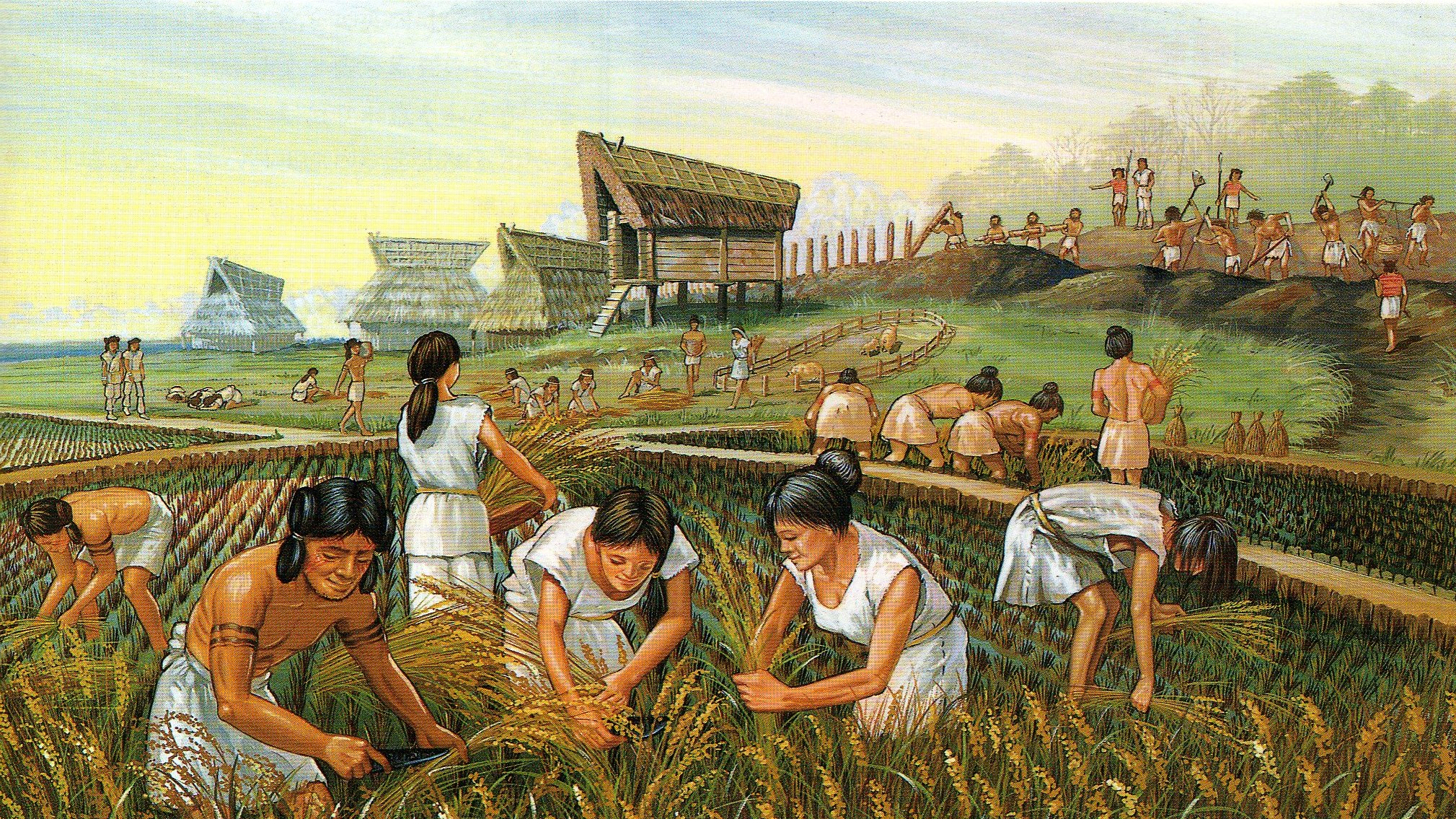 the beginning of agriculture essay This essay is one of a series on water and ethics published under the agriculture represents the first  water in agriculture is largely associated with.