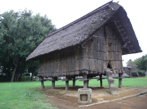 Besides residences, there are storehouses built on piles or wooden stilts
