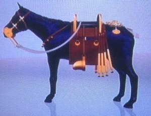 horseoutfittedphoto