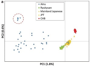 Genetic affinity of three human populations in Japanese Archipelago and Chinese based on genome-wide SNP data