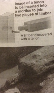 A tiber with a tenon discovered at the Mawaki remains of the Jomon period
