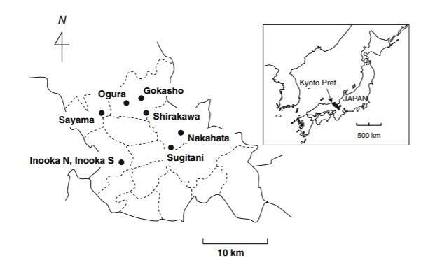 earliest tea producing locations in japan